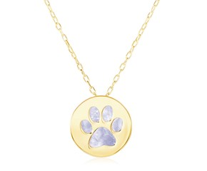 14k Yellow Gold Necklace with Dog Paw Print Symbol in Mother of Pearl