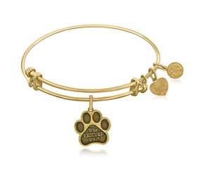Expandable Yellow Tone Brass Bangle with Who Rescued Symbol